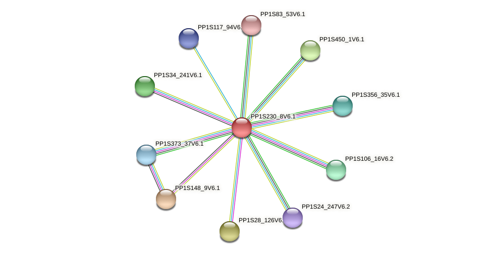 PP1S230_8V6.1 protein (Physcomitrella patens) - STRING interaction network