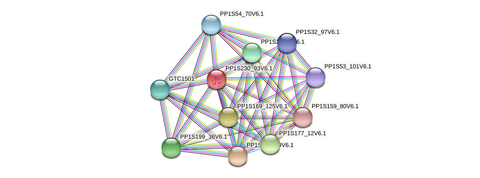 PP1S230_93V6.1 protein (Physcomitrella patens) - STRING interaction network