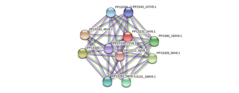 PP1S231_24V6.1 protein (Physcomitrella patens) - STRING interaction network