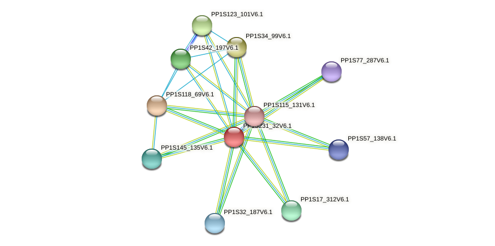 PP1S231_32V6.1 protein (Physcomitrella patens) - STRING interaction network