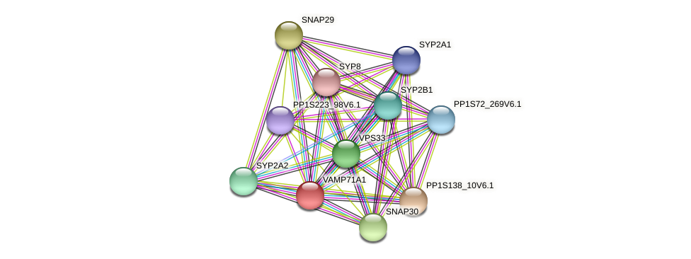 VAMP71A1 protein (Physcomitrella patens) - STRING interaction network