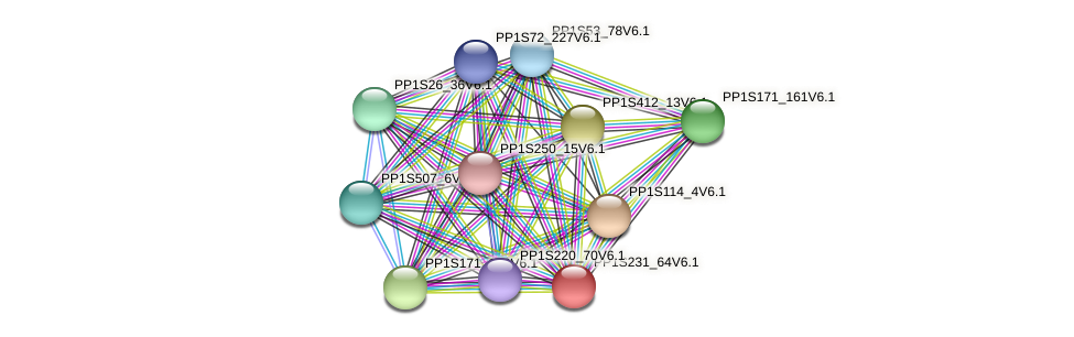 PP1S231_64V6.1 protein (Physcomitrella patens) - STRING interaction network