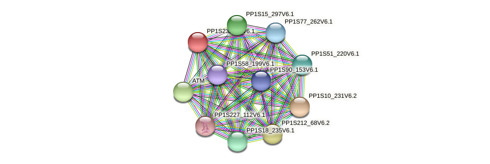 PP1S232_56V6.1 protein (Physcomitrella patens) - STRING interaction network