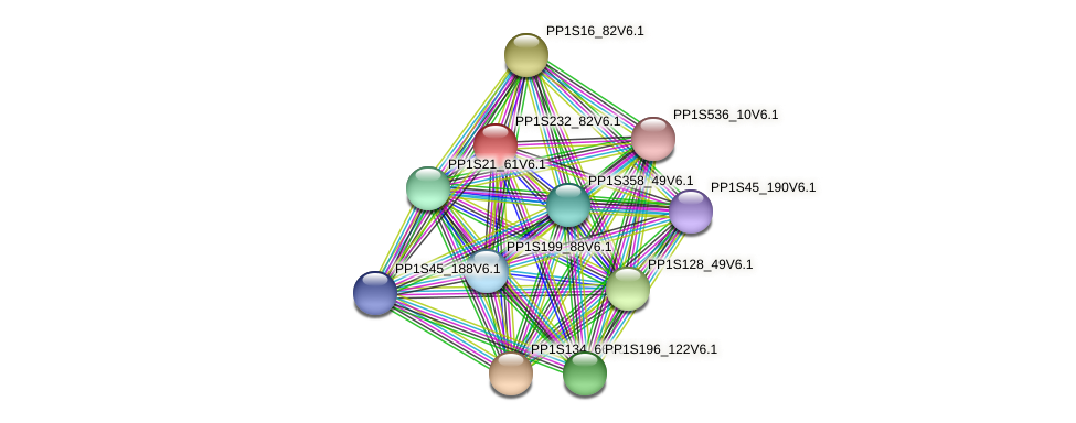 PP1S232_82V6.1 protein (Physcomitrella patens) - STRING interaction network