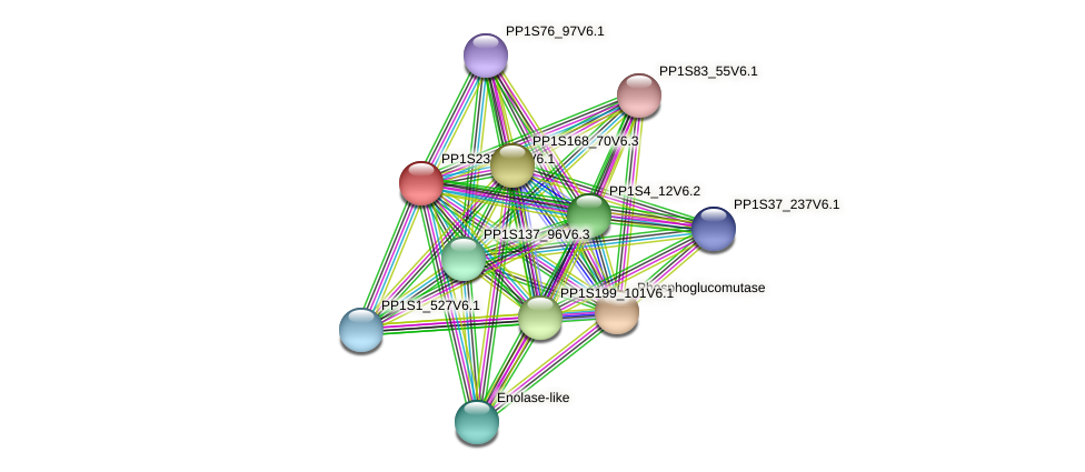 PP1S233_102V6.1 protein (Physcomitrella patens) - STRING interaction network
