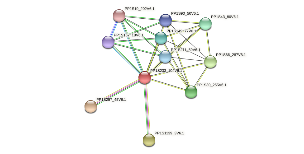 PP1S233_104V6.1 protein (Physcomitrella patens) - STRING interaction network