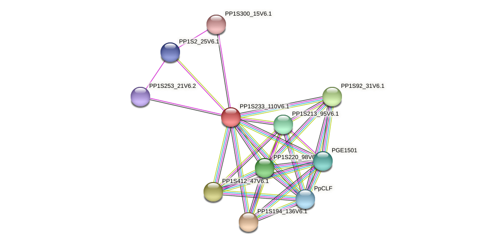 PP1S233_110V6.1 protein (Physcomitrella patens) - STRING interaction network