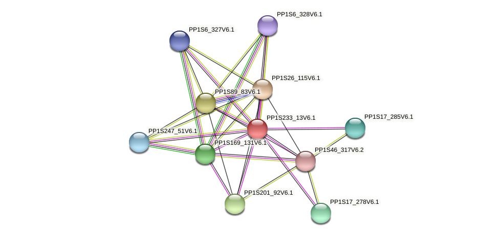 PP1S233_13V6.1 protein (Physcomitrella patens) - STRING interaction network