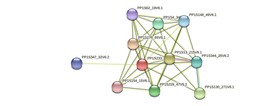 PP1S233_14V6.1 protein (Physcomitrella patens) - STRING interaction network