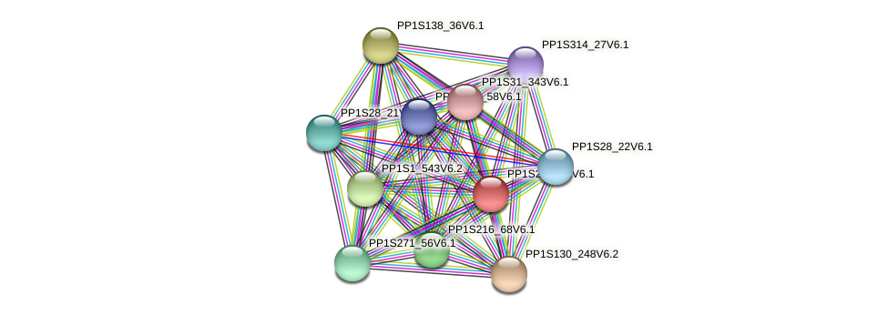PP1S233_42V6.1 protein (Physcomitrella patens) - STRING interaction network