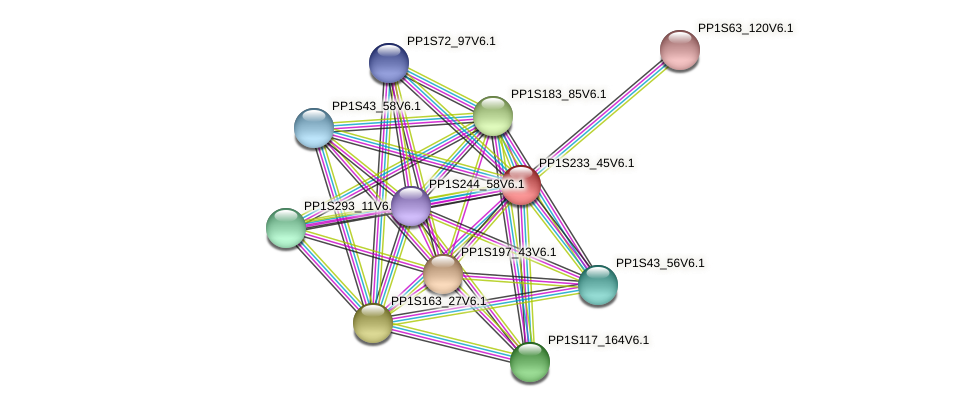 PP1S233_45V6.1 protein (Physcomitrella patens) - STRING interaction network