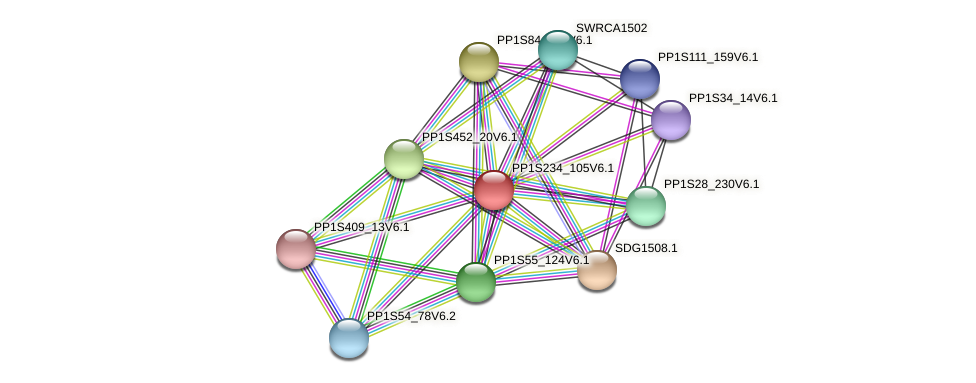 PP1S234_105V6.1 protein (Physcomitrella patens) - STRING interaction network