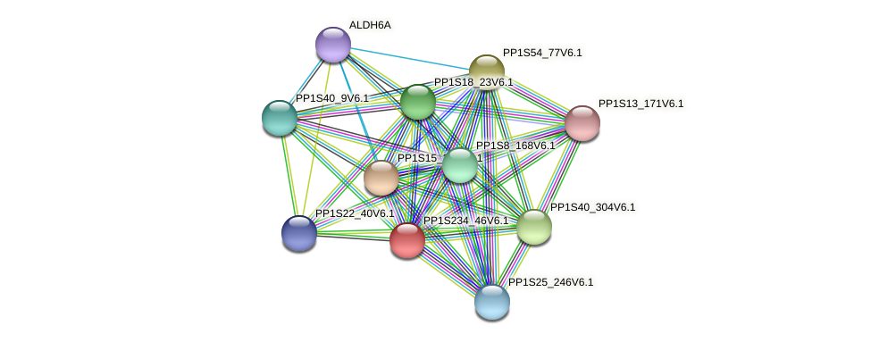 PP1S234_46V6.1 protein (Physcomitrella patens) - STRING interaction network