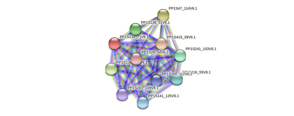 PP1S234_71V6.1 protein (Physcomitrella patens) - STRING interaction network