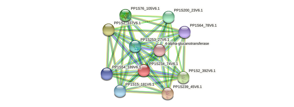 PP1S234_74V6.1 protein (Physcomitrella patens) - STRING interaction network