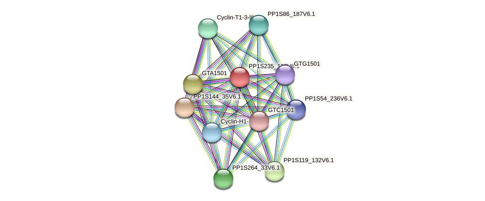 PP1S235_102V6.1 protein (Physcomitrella patens) - STRING interaction network