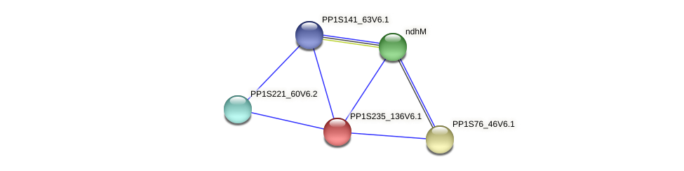 PP1S235_136V6.1 protein (Physcomitrella patens) - STRING interaction network
