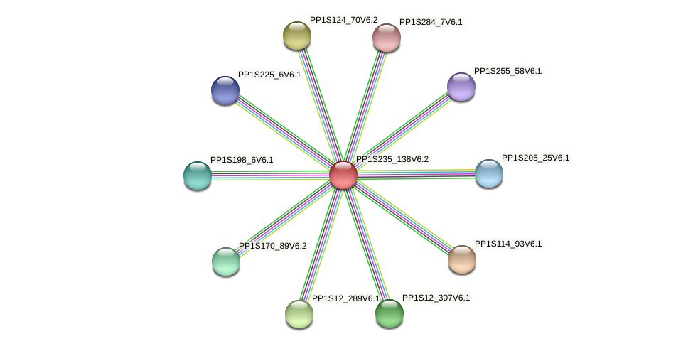 PP1S235_138V6.1 protein (Physcomitrella patens) - STRING interaction network