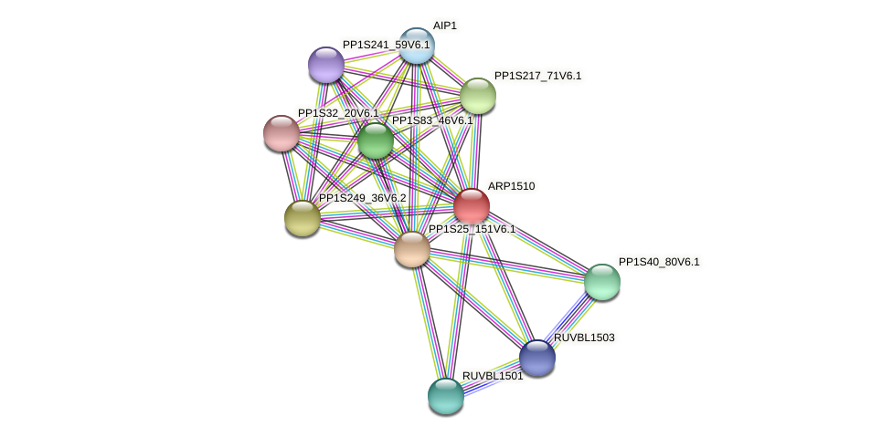 ARP1510 protein (Physcomitrella patens) - STRING interaction network