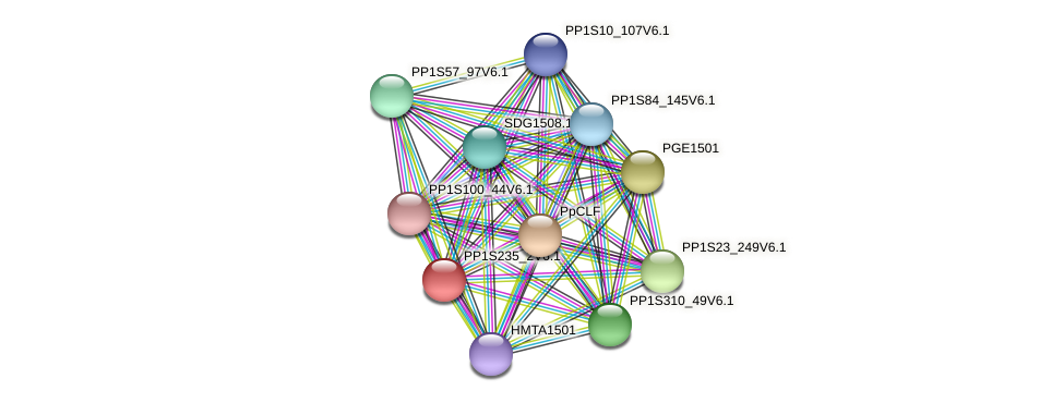 PP1S235_2V6.1 protein (Physcomitrella patens) - STRING interaction network