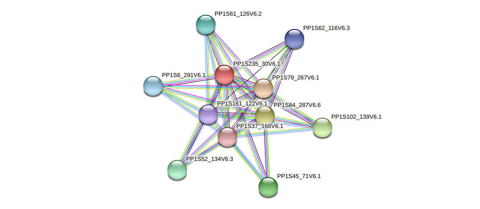 PP1S235_30V6.1 protein (Physcomitrella patens) - STRING interaction network