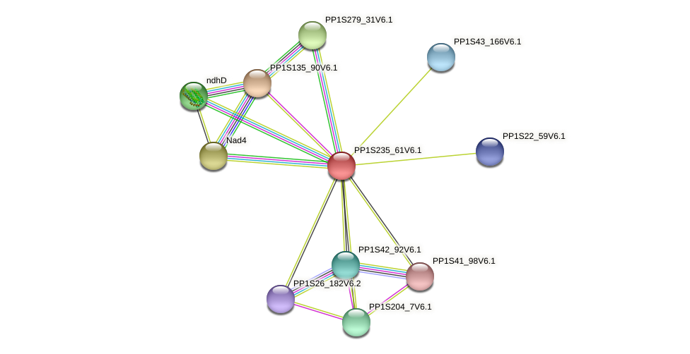 PP1S235_61V6.1 protein (Physcomitrella patens) - STRING interaction network