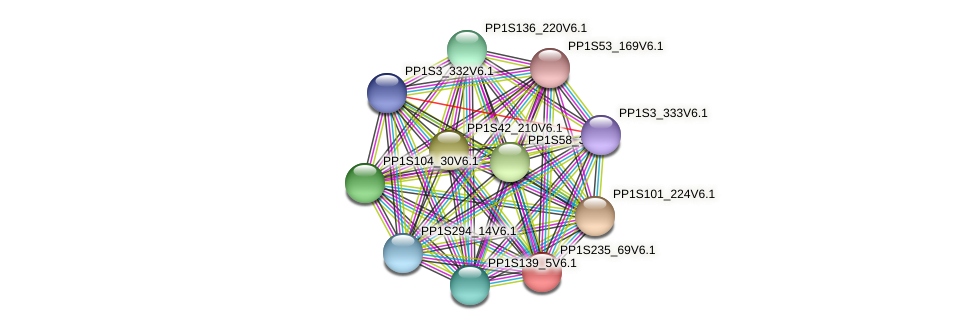 PP1S235_69V6.1 protein (Physcomitrella patens) - STRING interaction network