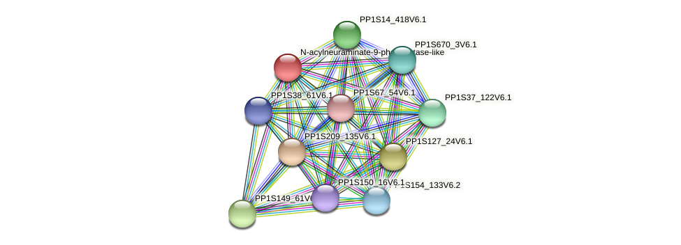 PP1S235_86V6.1 protein (Physcomitrella patens) - STRING interaction network