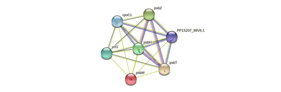 psbM protein (Physcomitrella patens) - STRING interaction network