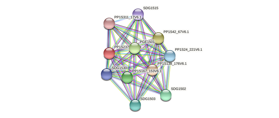 PP1S237_54V6.1 protein (Physcomitrella patens) - STRING interaction network