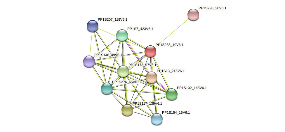 PP1S238_10V6.1 protein (Physcomitrella patens) - STRING interaction network