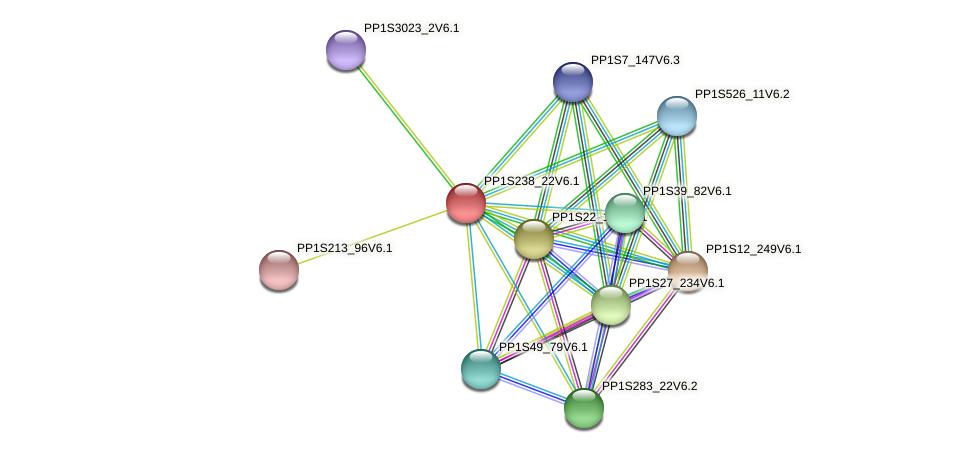 PP1S238_22V6.1 protein (Physcomitrella patens) - STRING interaction network