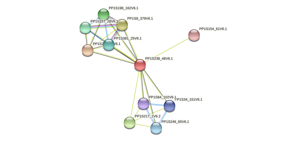 PP1S238_46V6.1 protein (Physcomitrella patens) - STRING interaction network