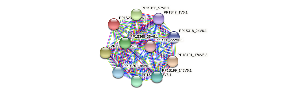 PP1S238_74V6.1 protein (Physcomitrella patens) - STRING interaction network