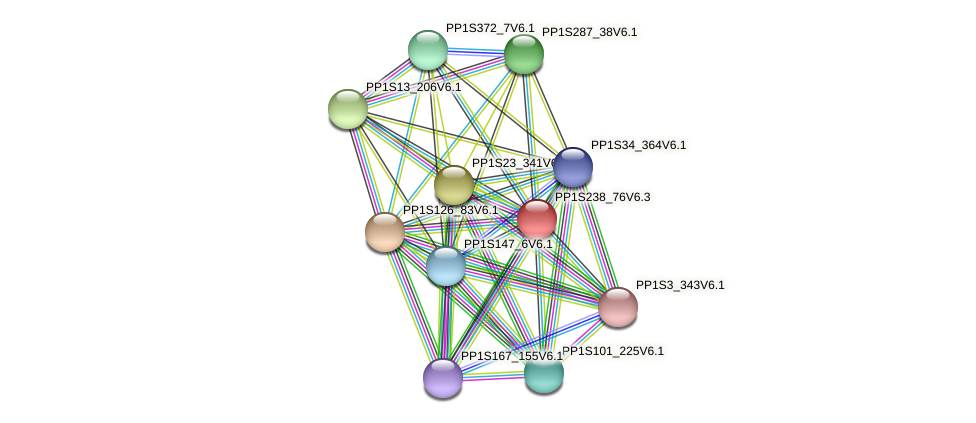 PP1S238_76V6.1 protein (Physcomitrella patens) - STRING interaction network
