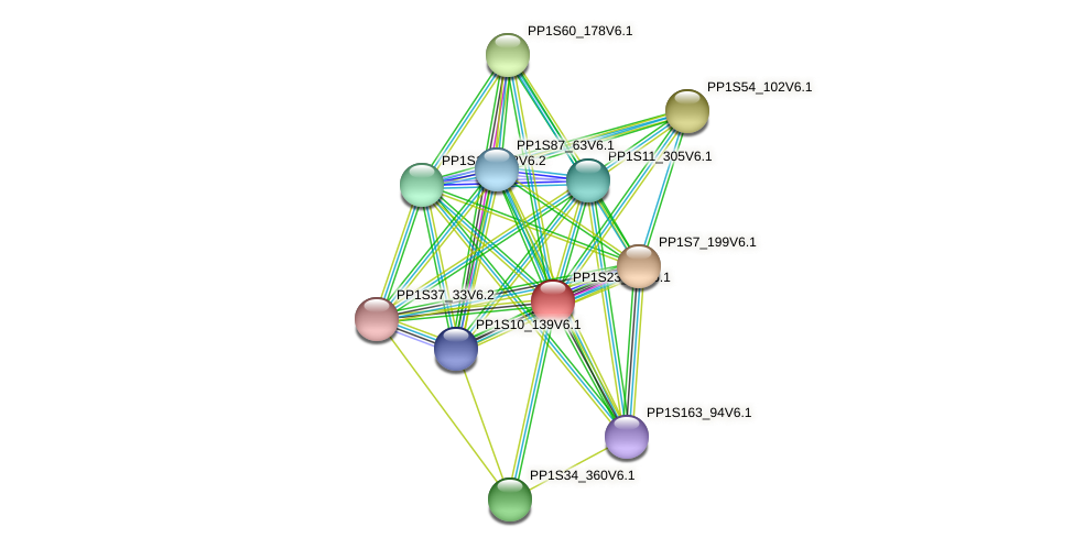 PP1S23_10V6.1 protein (Physcomitrella patens) - STRING interaction network