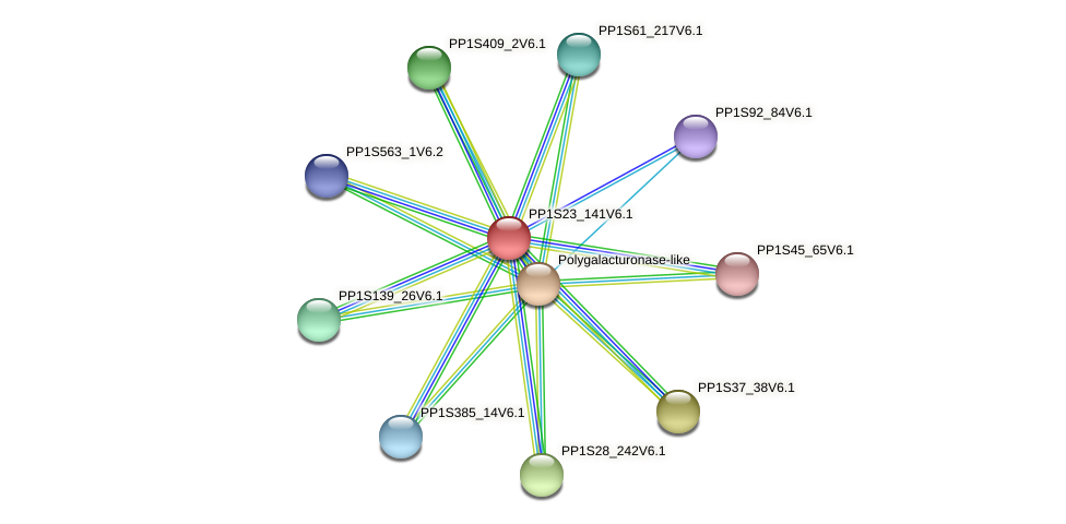 PP1S23_141V6.1 protein (Physcomitrella patens) - STRING interaction network