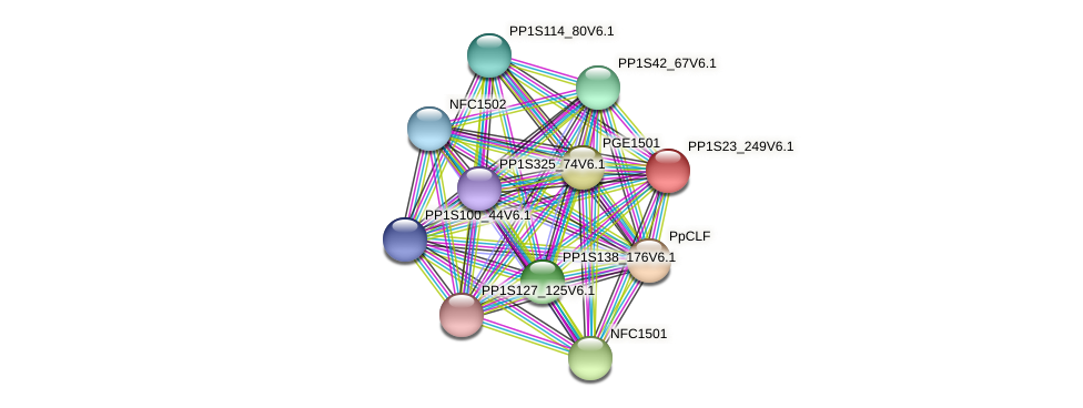 PP1S23_249V6.1 protein (Physcomitrella patens) - STRING interaction network