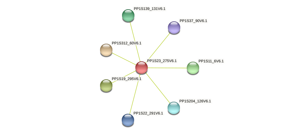 PP1S23_275V6.1 protein (Physcomitrella patens) - STRING interaction network