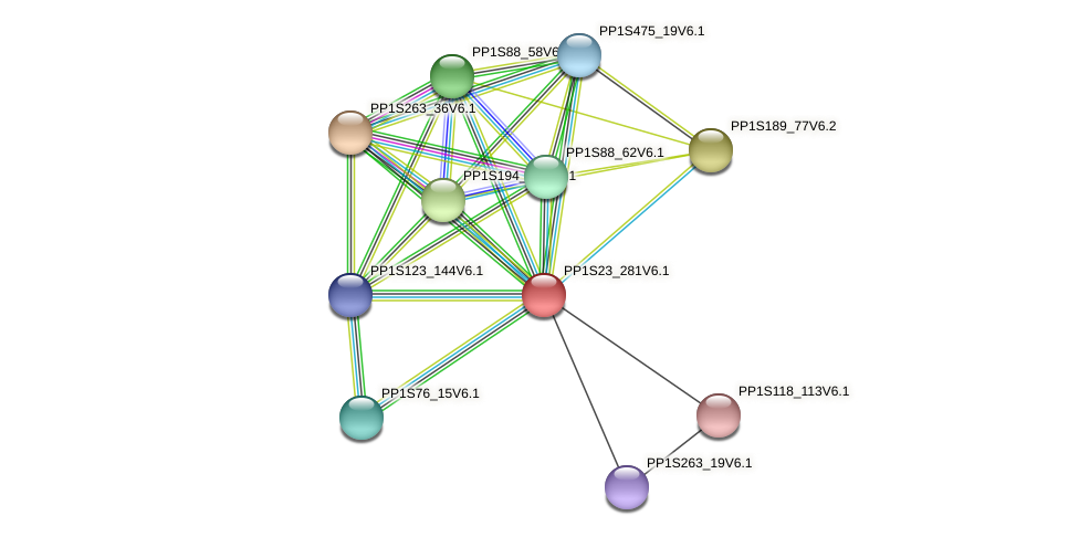 PP1S23_281V6.1 protein (Physcomitrella patens) - STRING interaction network