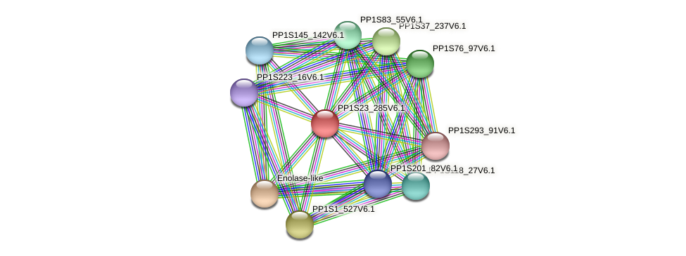 PP1S23_285V6.1 protein (Physcomitrella patens) - STRING interaction network