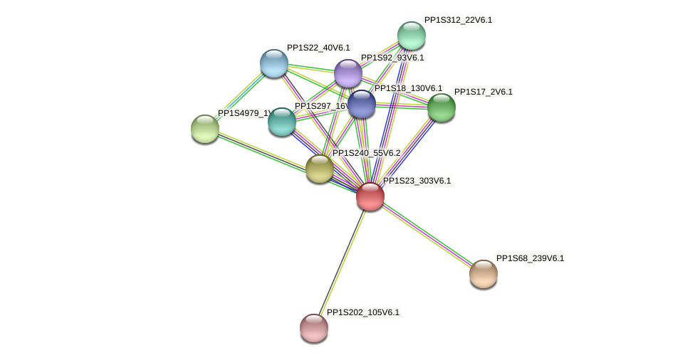 PP1S23_303V6.1 protein (Physcomitrella patens) - STRING interaction network