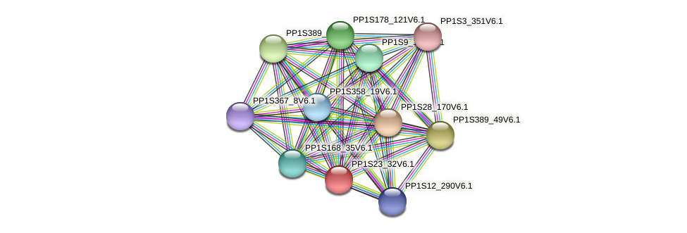 PP1S23_32V6.1 protein (Physcomitrella patens) - STRING interaction network