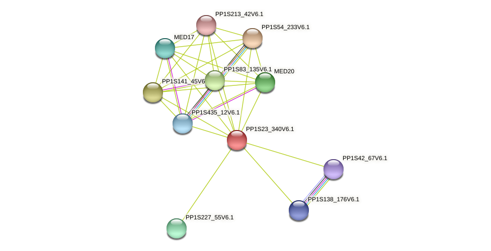 PP1S23_340V6.1 protein (Physcomitrella patens) - STRING interaction network