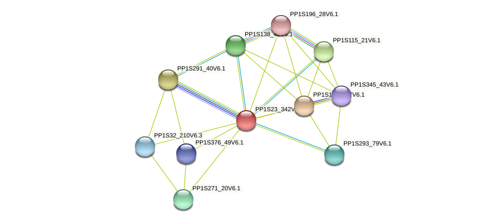 PP1S23_342V6.1 protein (Physcomitrella patens) - STRING interaction network