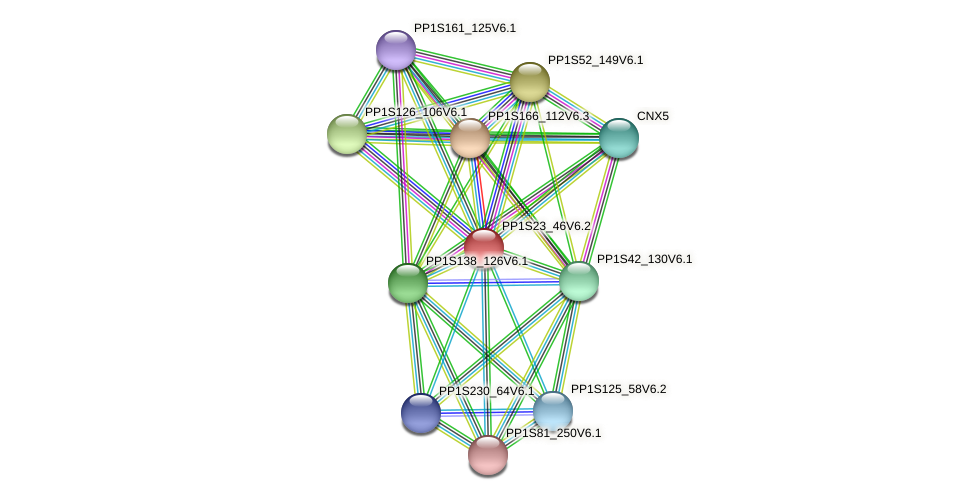 PP1S23_46V6.2 protein (Physcomitrella patens) - STRING interaction network