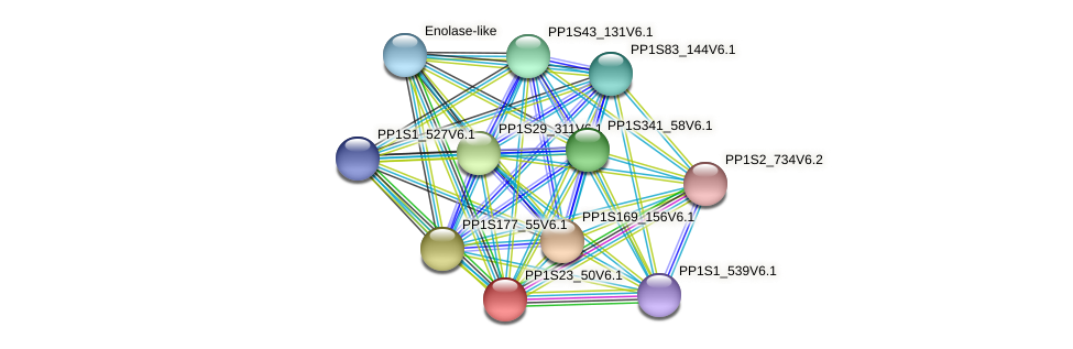 PP1S23_50V6.1 protein (Physcomitrella patens) - STRING interaction network