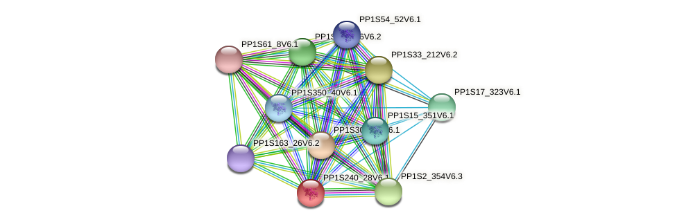 PP1S240_28V6.1 protein (Physcomitrella patens) - STRING interaction network