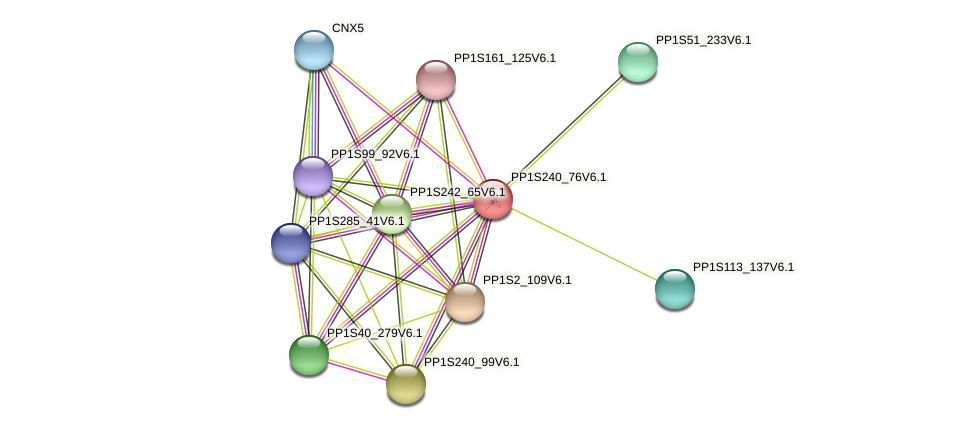 PP1S240_76V6.1 protein (Physcomitrella patens) - STRING interaction network