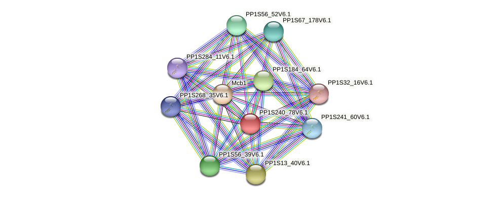 PP1S240_78V6.1 protein (Physcomitrella patens) - STRING interaction network